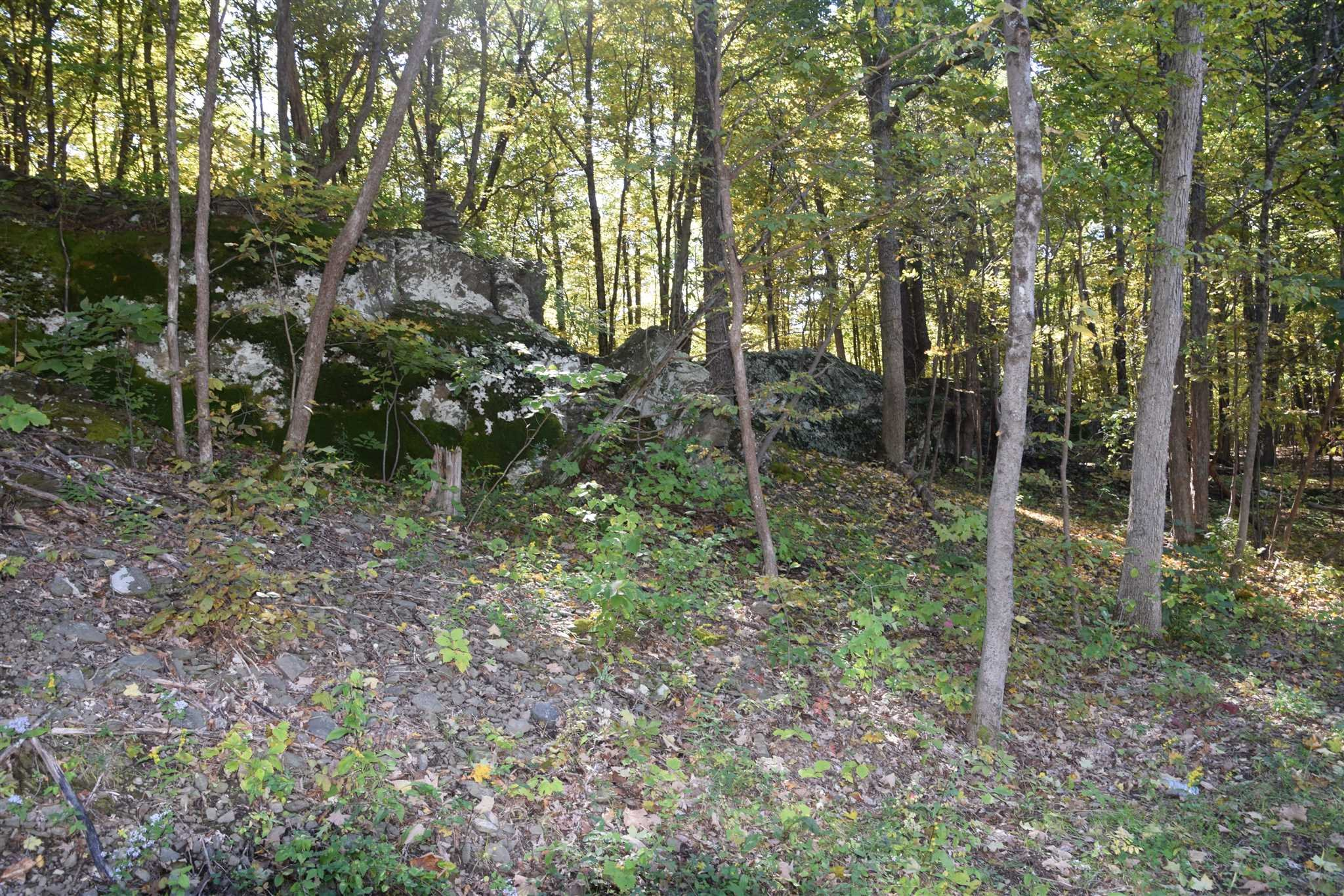 0 US ROUTE 9W Athens, NY 12015 - MLS #: 375848